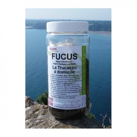 Algues pour le bain - Fucus 450 g