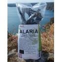 Alaria (atlantic wakamé)