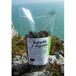 Salade 3 algues bio