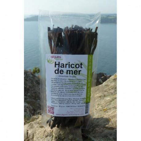 Haricot de mer deshydraté - Sachet 50 g